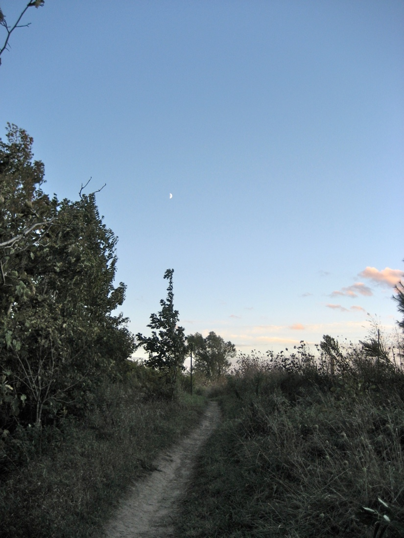 Bruce Trail Moon