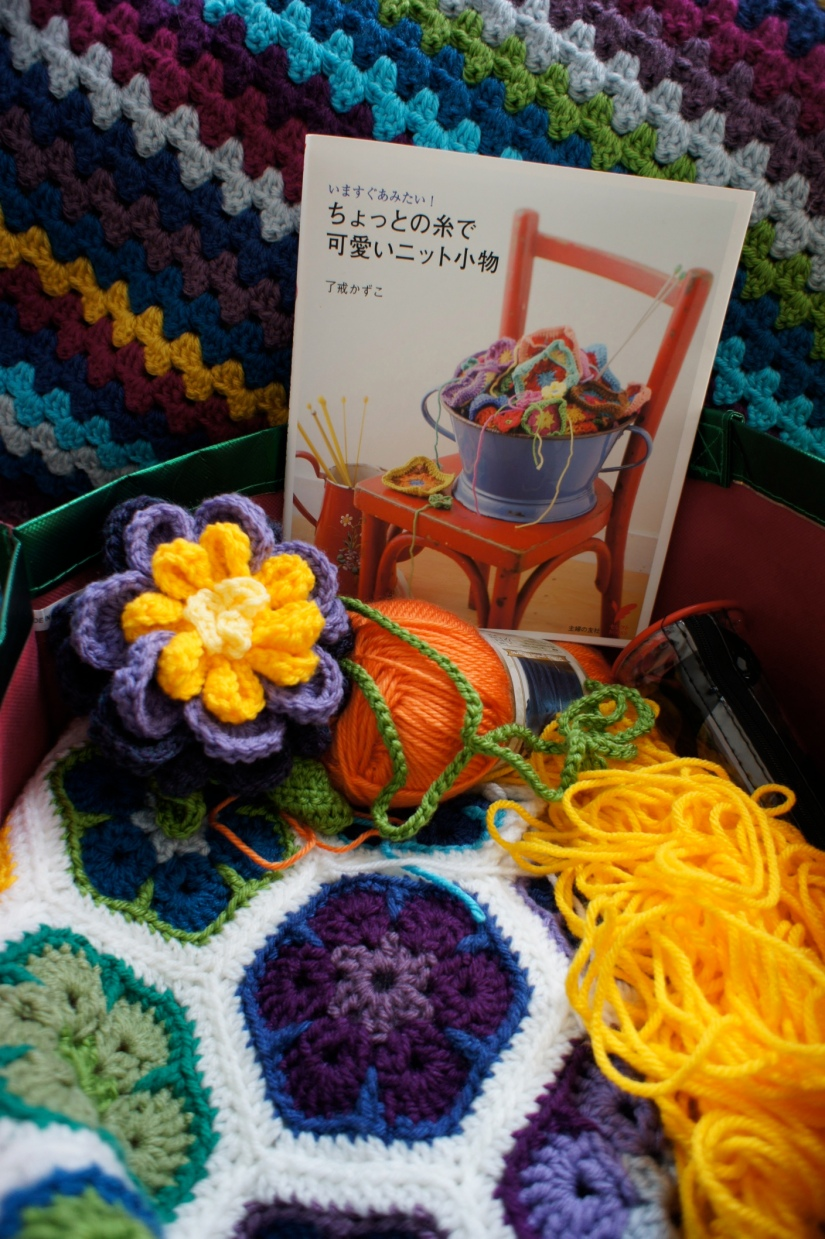 Crochet Book and Yarn