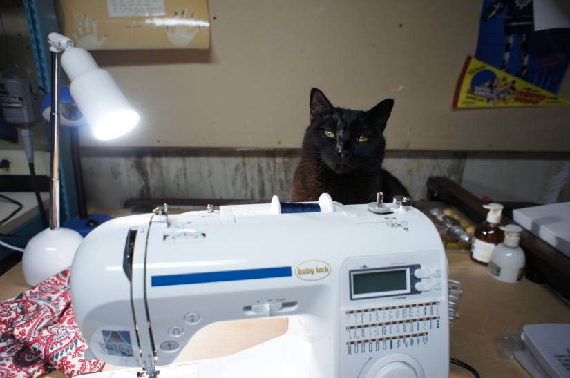 Boo and sewing machine