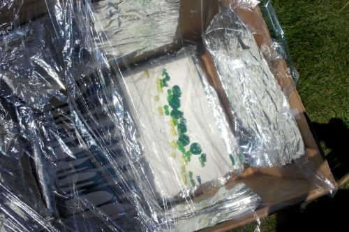 Melted Crayon Painting in Solar Cooker